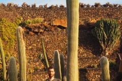 Dans le jardin des cactus