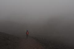 Promenons-nous dans le brouillard