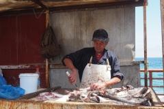 Pêcheur à l'oeuvre
