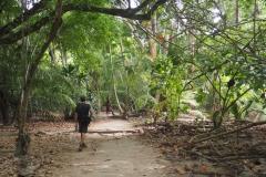 Parc Tayrona