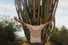 Un homme et un cactus