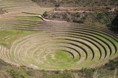 Les terrasses de Moray