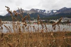 En Patagonie il faut du blé