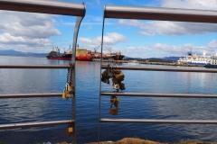 Le port et ses bateaux