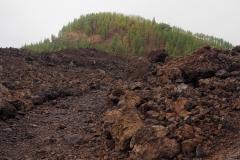 Flancs volcan Chinyero