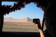 Regard sur les dunes