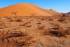 Dune 45, la plus belle (suite)