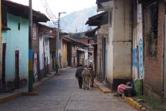 Rue péruvienne