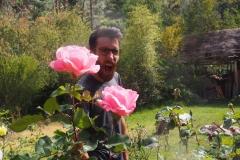 Rose Rem