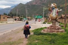 Lamay, la ville du cuy